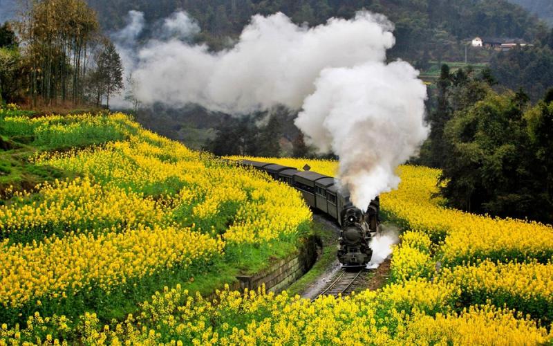 top China train tours