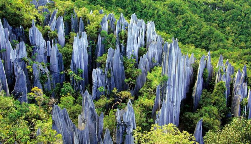 Kunming Stone Forest tours
