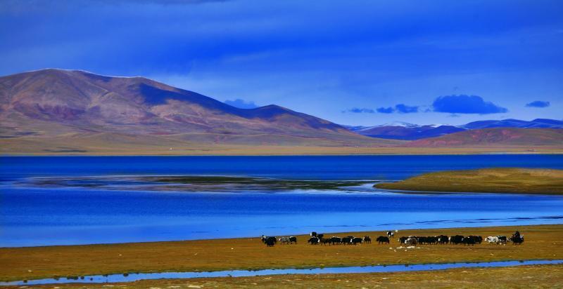 China Tibet Tours
