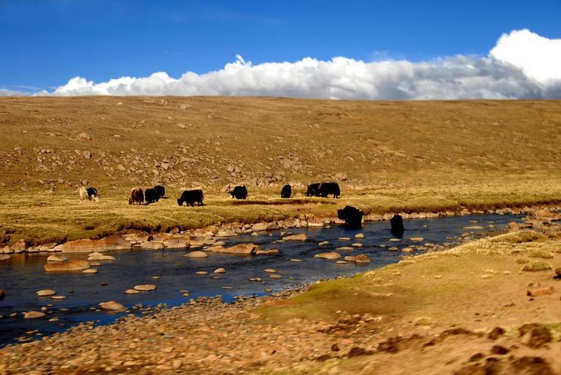 Biking to Tibet