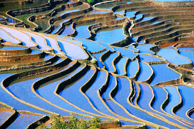 Yuanyang Paddy Fields Yuanyang Rice Terraced Fields Travel Photos Images Amp Pictures Of