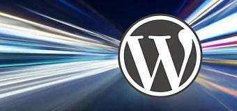 Vitesse Wordpress Htaccess Gtmetrix