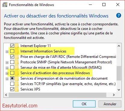 08 fonctionnalites windows iis service