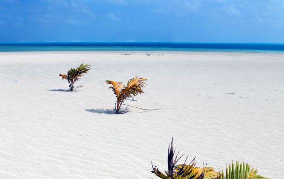 Las playas desiertas de Atiu : Playa de Atiu - Islas Cook