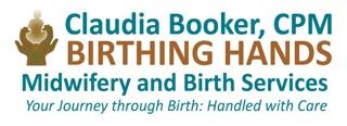 Birthing Hands - Nonprofit Pavilion Sponsor