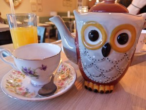 Owl Teapot for Two