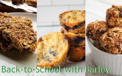 Back-to-School with Barley