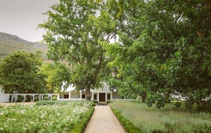 la paris gardens sonia cabano blog eatdrinkcapetown
