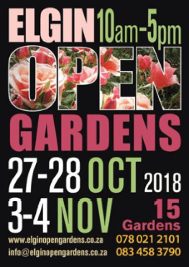 elgin open gardens flyer sonia cabano blog eatdrinkcapetown