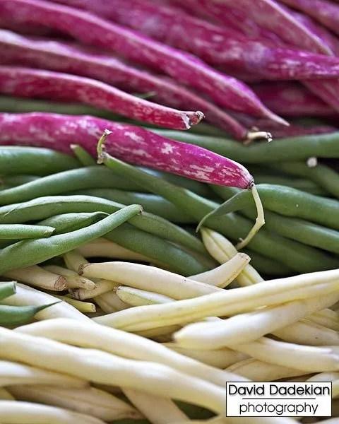 Four Town Farm's pole beans