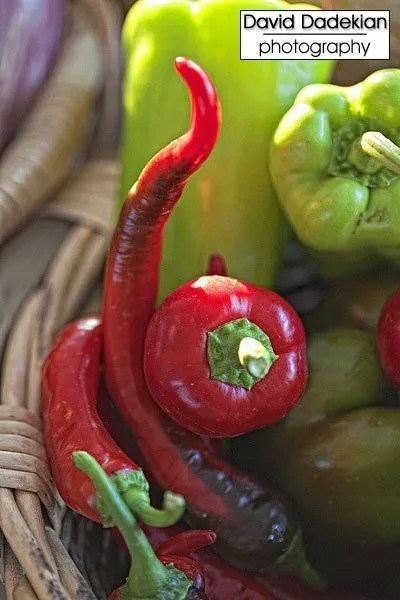Four Town Farm's peppers