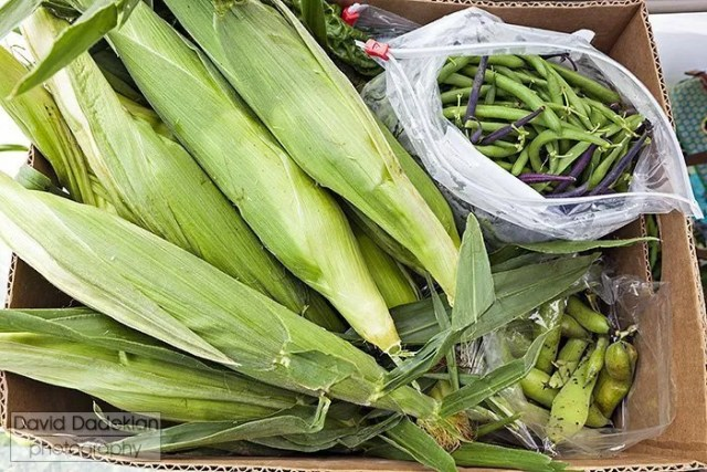 New Urban Famers CSA basket with corn, pole beans and favas