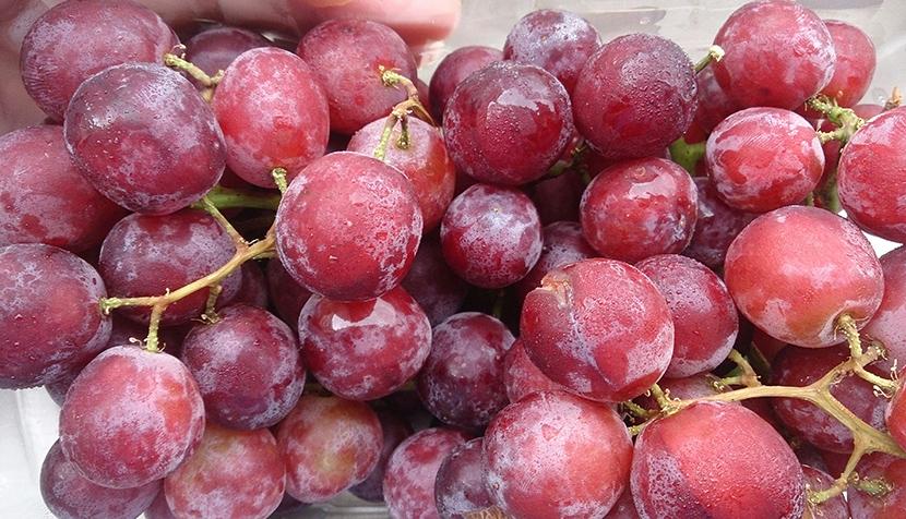 turmeric, red grapes