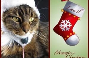 A Meowie Christmas