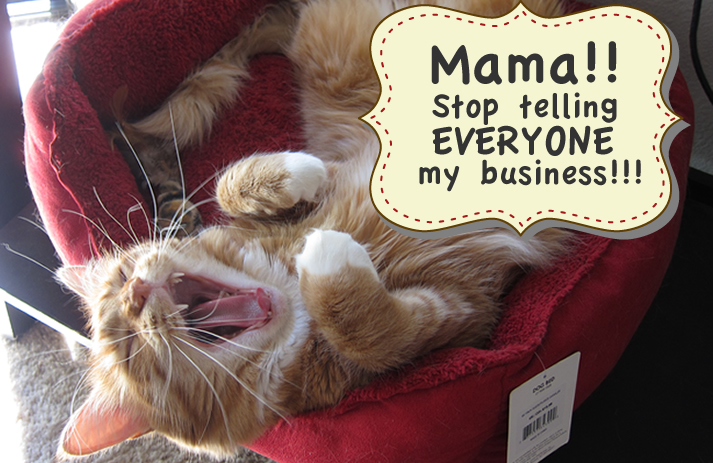 "Max yelling, ""Mama!! Stop telling everyone my business!"""