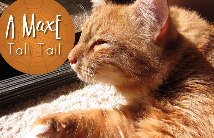 MaxE Tall Tail: The Case of the Missing Mama