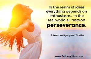 In the realm of ideas everything depends on enthusiasm... in the real world all rests on perseverance. Johann Wolfgang von Goethe