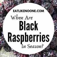 When are Black Raspberries in Season?