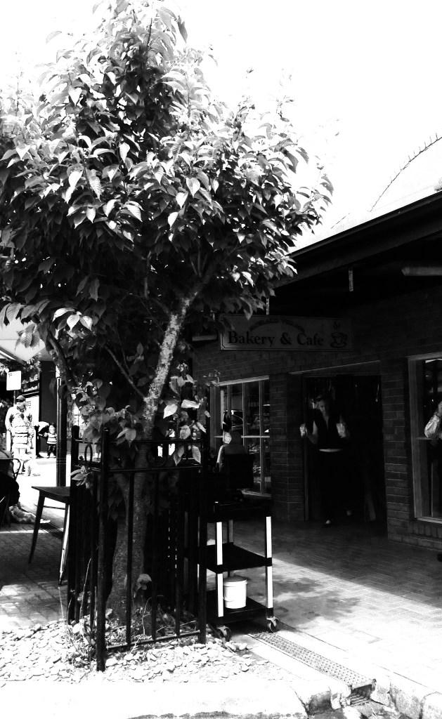 Emerald Village Bakery & Cafe