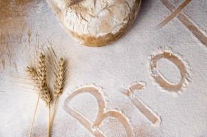 bread-1001362_1280