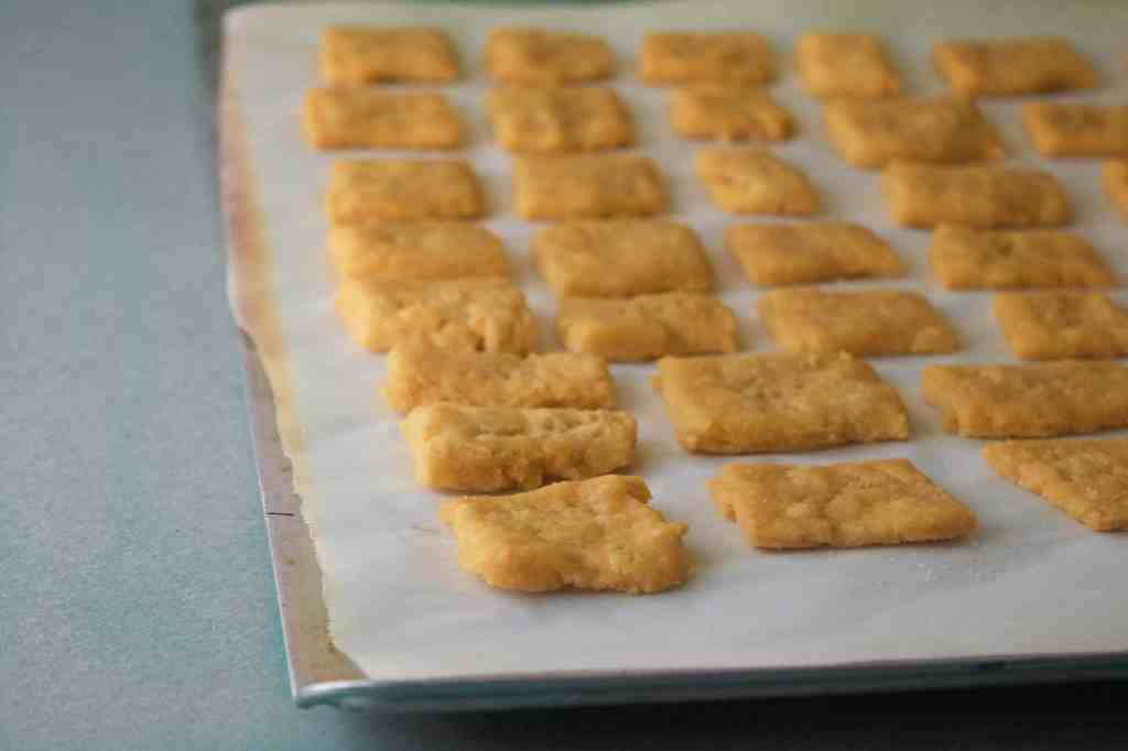 gluten free cracker recipe