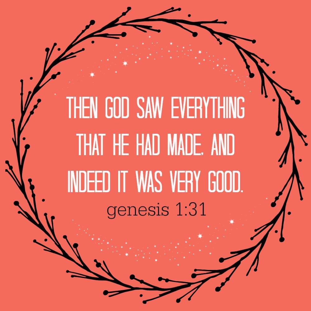 Reflection On Gods Creation Eatordrink