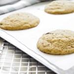 carob chip cookie recipe sorghum flour recipe gluten free cookie recipe