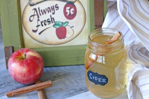apple cider gluten free vegan allergy friendly recipe