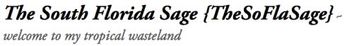 The SoFla Sage