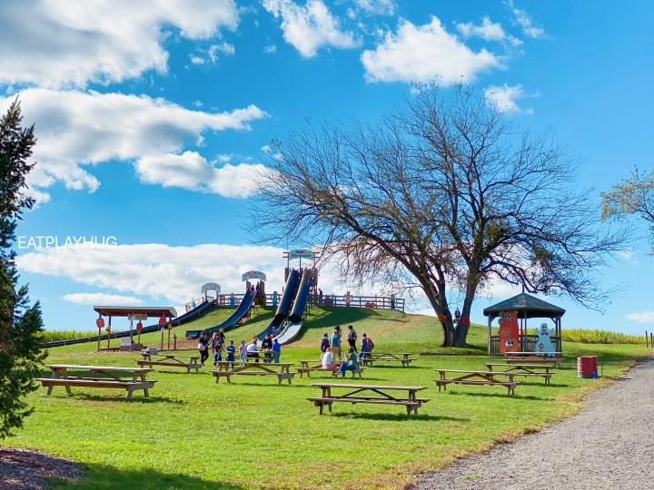 Slides at Butler's Farm