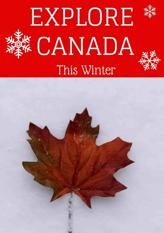 explore Canada in the winter