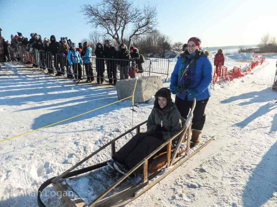 Learning to drive a dog sled