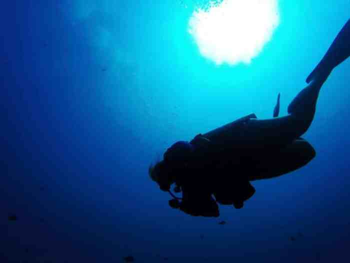 Solo travel in Bali- diving