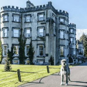 Ballyseede Castle Hotel, Ireland
