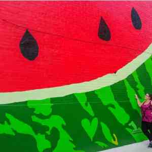 Watermelon House DC