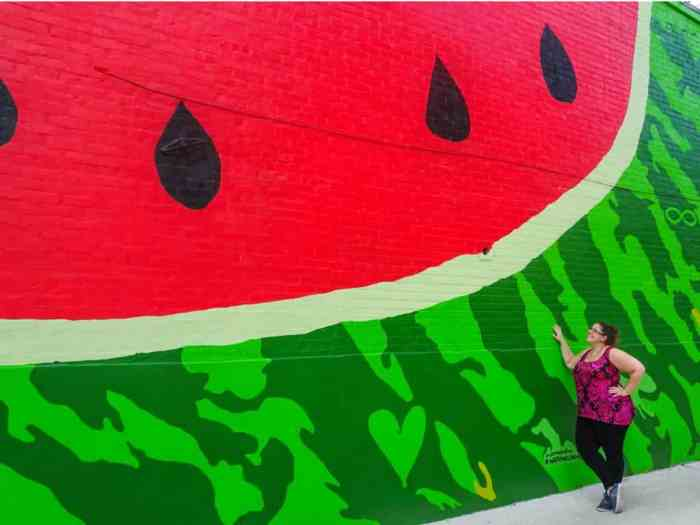 Watermelon House DC