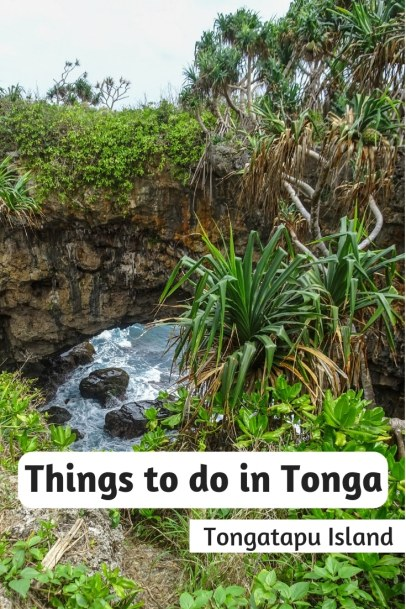 From swimming with whales to island day trips and snorkelling pigs. Here are the top things to do in Tonga: A Tongatapu Island guide. #Tonga #Tongatapu