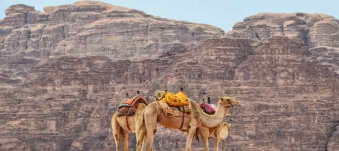 Embrace Your Inner Indiana Jones With These Top Things to do in Jordan