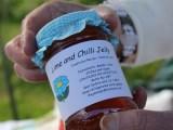 Food Fair at Village Greens, Ockley