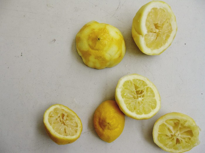 lemons for vegan paleo cheesecake