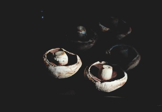mushrooms light