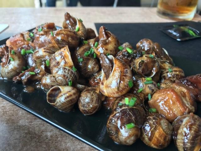 Snails in Spain
