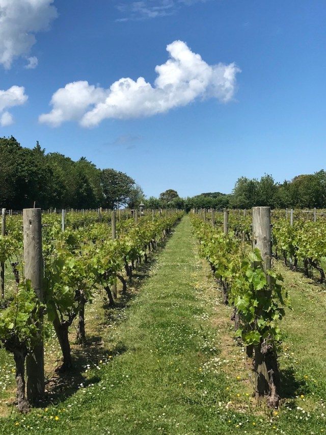 La Mare Wine Estate, Jersey