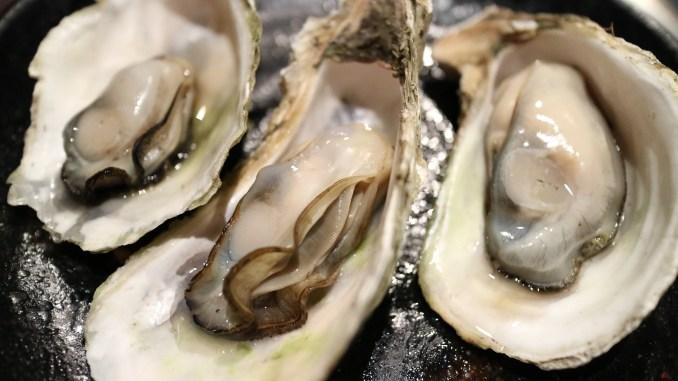 Raw Oysters Fresh