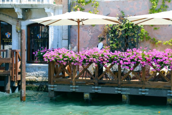 Venice grand canal flowers