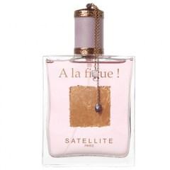 Satellite Figue Paris