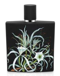 NEST Amazon Lily