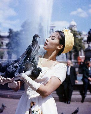 france_nuyen_bird