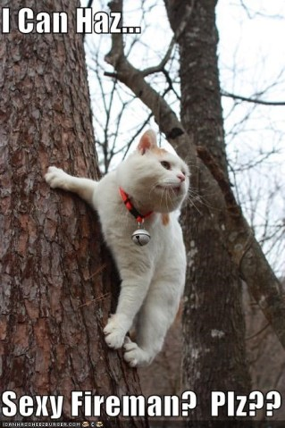 fireman kitty