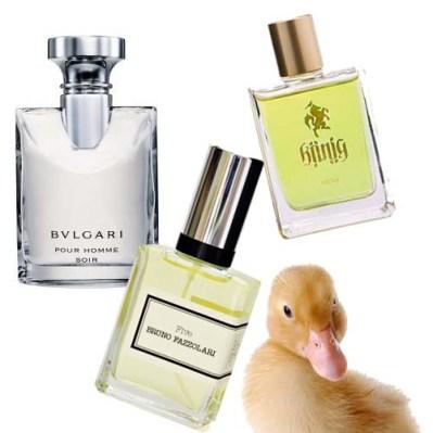 spring fragrances for men